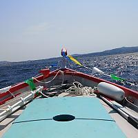 Pointu toulonnais dans la baie de Sanary / Six-Fours