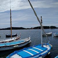 Mon rêve, Pointu Toulonnais construit en 1951